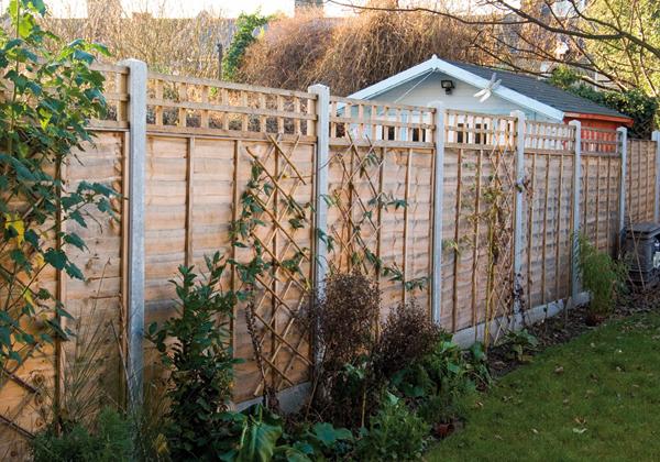 5 X 3 Jacksons Garden Sheds Info
